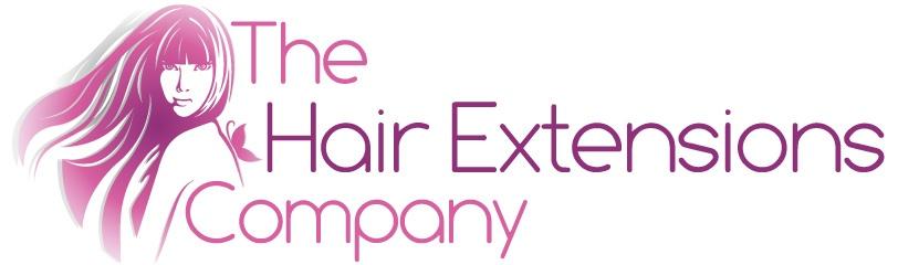 Hair-Extensions-Logo-2012-purple-large